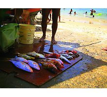 An Exotic Catch Photographic Print