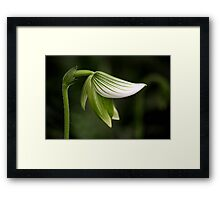 A Promise of More Framed Print