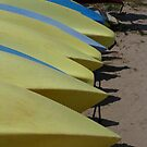 Yellow canoes by Woodie