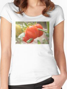 Fresh Garden Tomatoes Women's Fitted Scoop T-Shirt