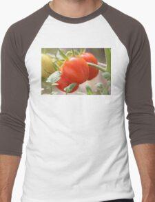 Fresh Garden Tomatoes Men's Baseball ¾ T-Shirt