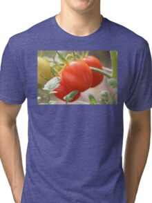 Fresh Garden Tomatoes Tri-blend T-Shirt