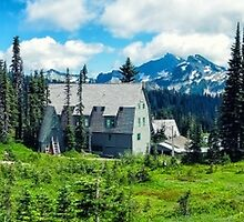 Paradise at Mt Rainer by Jason Butts