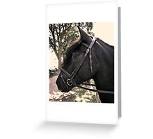 Dales Mare Greeting Card