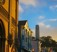 San Francisco Coit Tower by David Denny