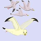 Happy Seagulls by Fred Jinkins