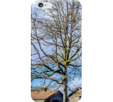 Old Buildings and Tree iPhone Case/Skin
