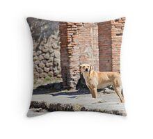 Stray Dog 3 Throw Pillow