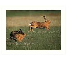 Hare Chase Art Print