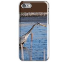 Heron Hunting At Sweet Marsh iPhone Case/Skin