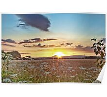 Sundown Over North Downs Poster