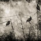 Blackbirds by Theodore Black
