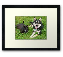 Rosie and Mia - Best Friends Framed Print