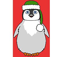 Christmas Penguin with Green Santa Hat Photographic Print