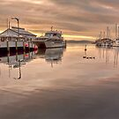 DUCKS & BOATS by Lynden