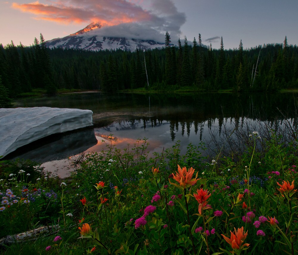 Mount Rainier Summer by Dan Mihai