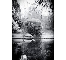 Winter's Reflections Photographic Print