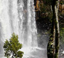 Trentham Falls by Leonie Morris
