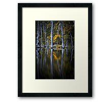 Reflected Framed Print
