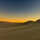 The Dunes by Leah Kennedy