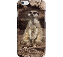 Meerkat iPhone Case iPhone Case/Skin