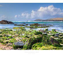 Treyarnon Bay by Andrew Roland