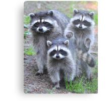 Family Portrait Metal Print