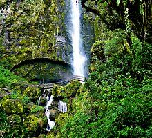 El Chorros Waterfalls Of Giron VI by Al Bourassa