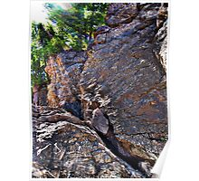 Climbing Rocks And Trees Poster