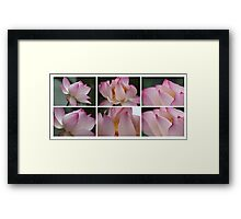 Lilies on White Framed Print