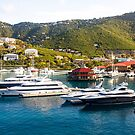 Four Yachts in St Thomas by dbvirago