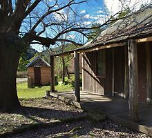 Settlers' Cabin 2 by Liz Worth