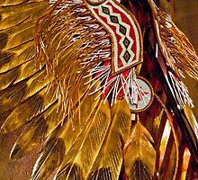 Navajo Headress by phil decocco