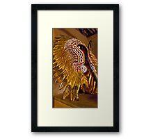 Navajo Headress Framed Print
