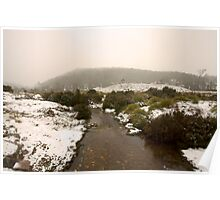 Lilla Creek @ Cradle Mountain Poster