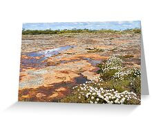 Buntine Nature Reserve Greeting Card