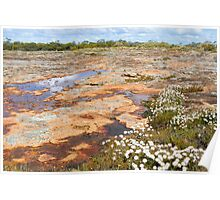 Buntine Nature Reserve Poster