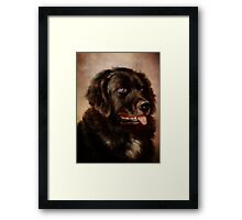 Canine Attachment Framed Print