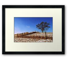 Tree with a Fence Framed Print