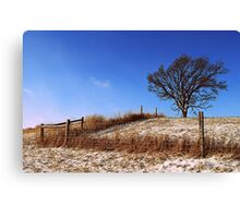 Tree with a Fence Canvas Print