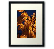 Lanterns of Asia Framed Print