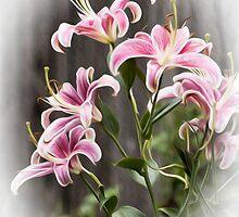 Dance of the Lilies by KBritt