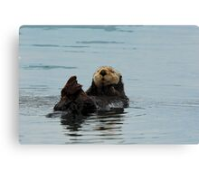 Alaskan Sea Otter Canvas Print