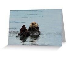 Alaskan Sea Otter Greeting Card
