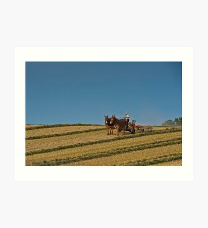 Amish Farmer - A Life Less Hurried - Lancaster, PA USA Art Print
