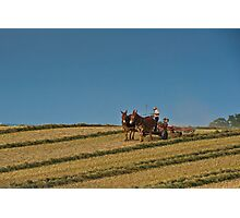 Amish Farmer - A Life Less Hurried - Lancaster, PA USA Photographic Print