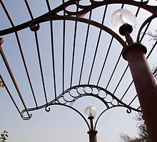 A metal structure, part of the lamp shade arrangement in a garden by ashishagarwal74