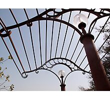 A metal structure, part of the lamp shade arrangement in a garden Photographic Print