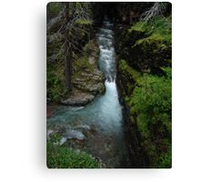 AVALANCHE CREEK, GLACIER NATIONAL PARK Canvas Print