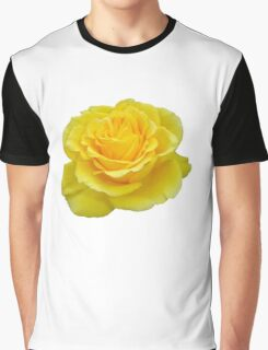 Beautiful Yellow Rose Closeup Isolated On White Graphic T-Shirt